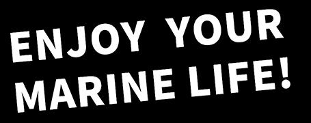 Enjoy your Marine!